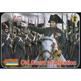 1/72 Napoleonic Old Guard Standing at Attention (STR)